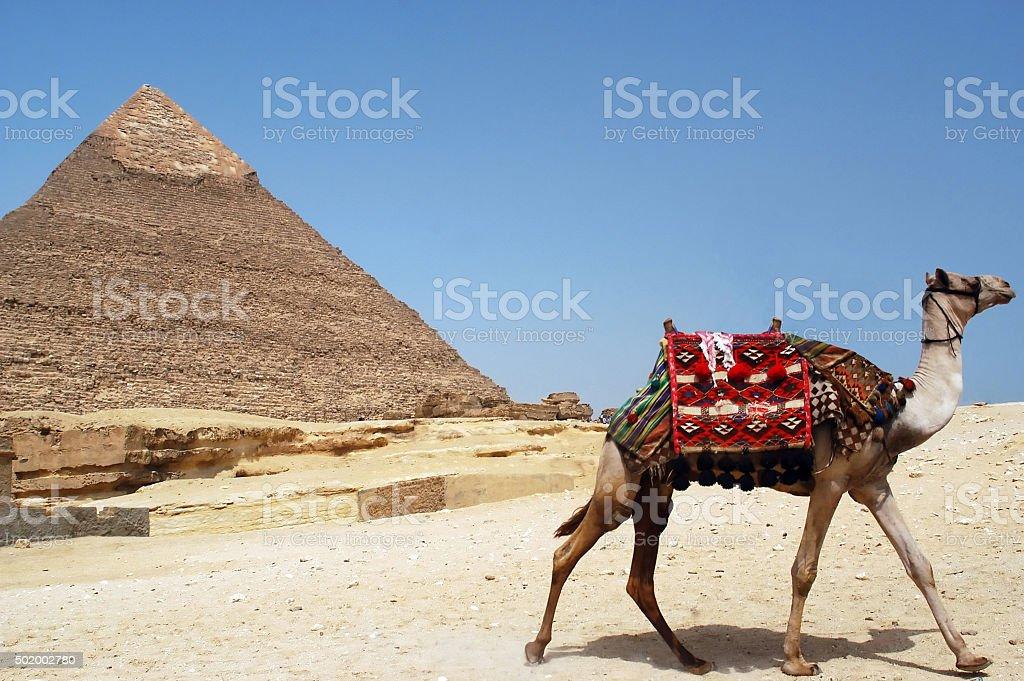 Pyramid of Chefren, Giza, Egypt stock photo