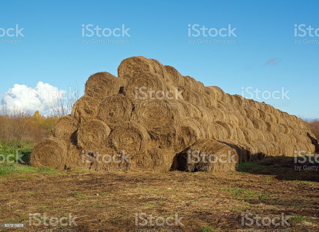 pyramid of hay stock photo
