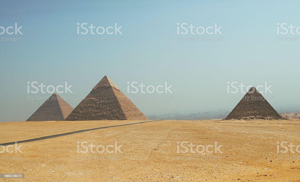 Pyramids of Giza. Egypt. September 2008 stock photo
