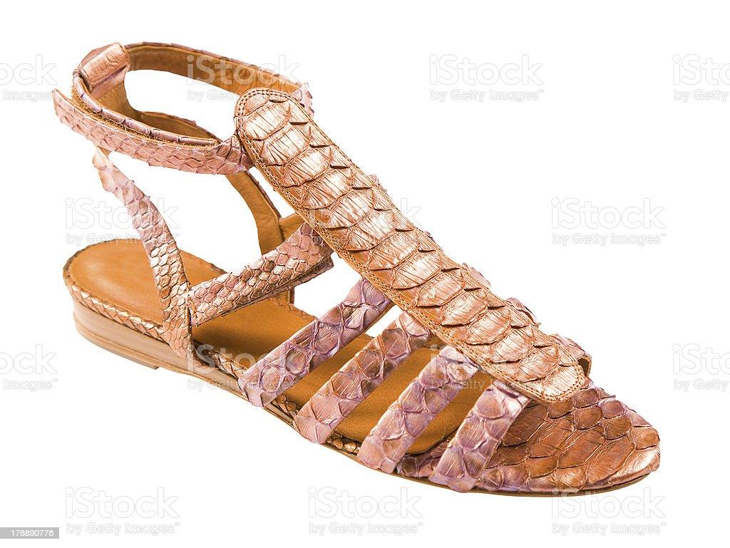 Python leather roman sandal royalty-free stock photo