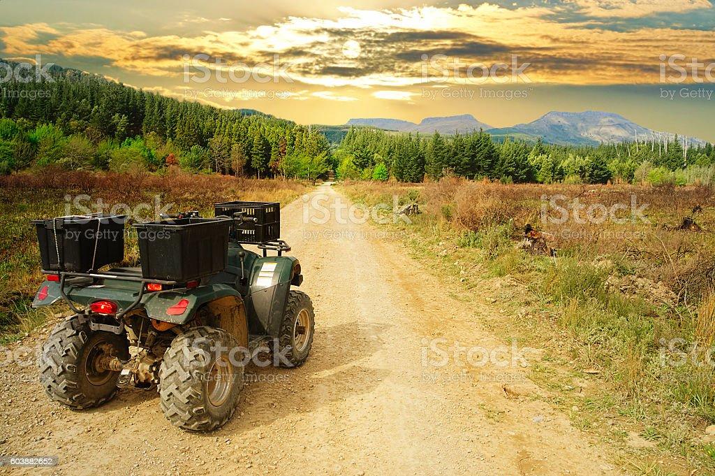 Quad bike, ATV, in the wilderness stock photo