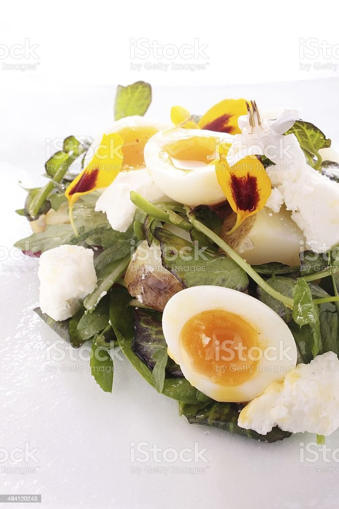 quail egg and watercress with fetta cheese salad stock photo