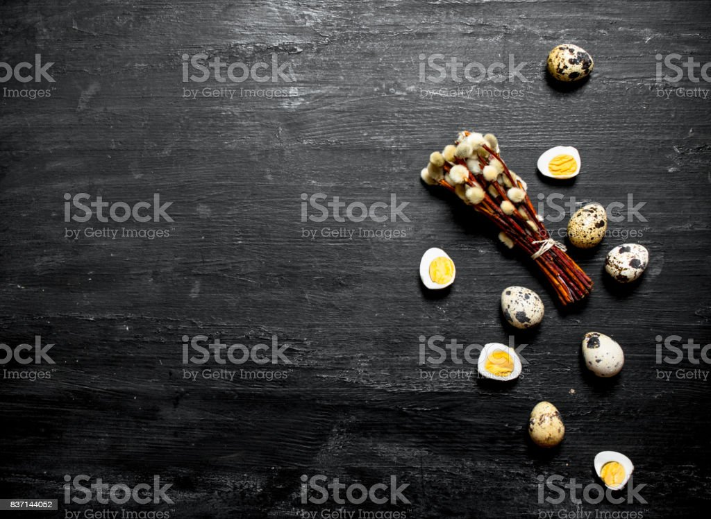 Quail eggs and willow branches. stock photo