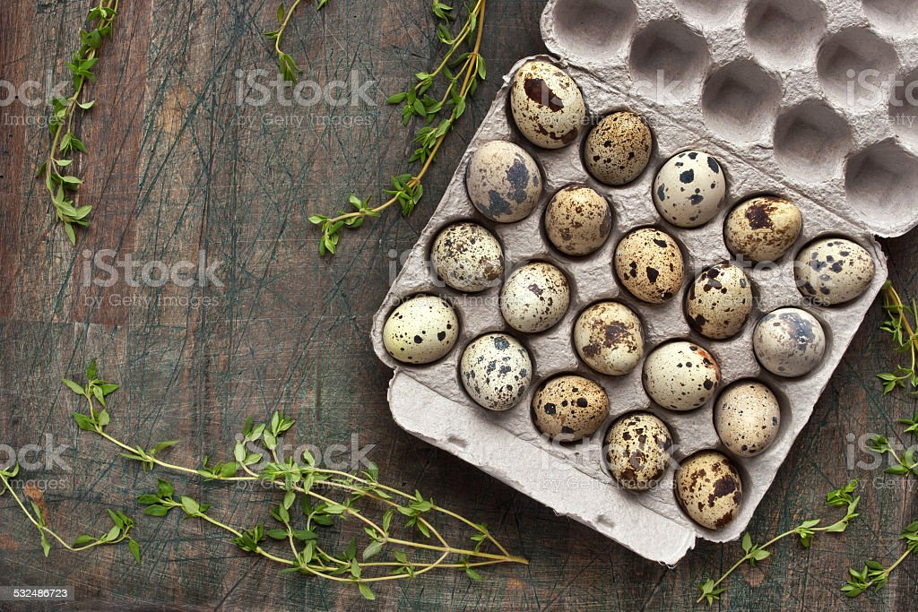 Quail eggs in the cardboard packing on the grey table stock photo