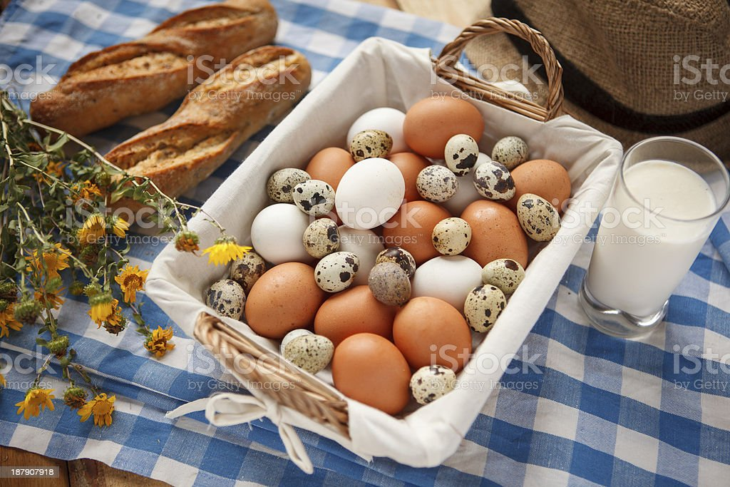 Quail eggs, more nutritious than chicken stock photo