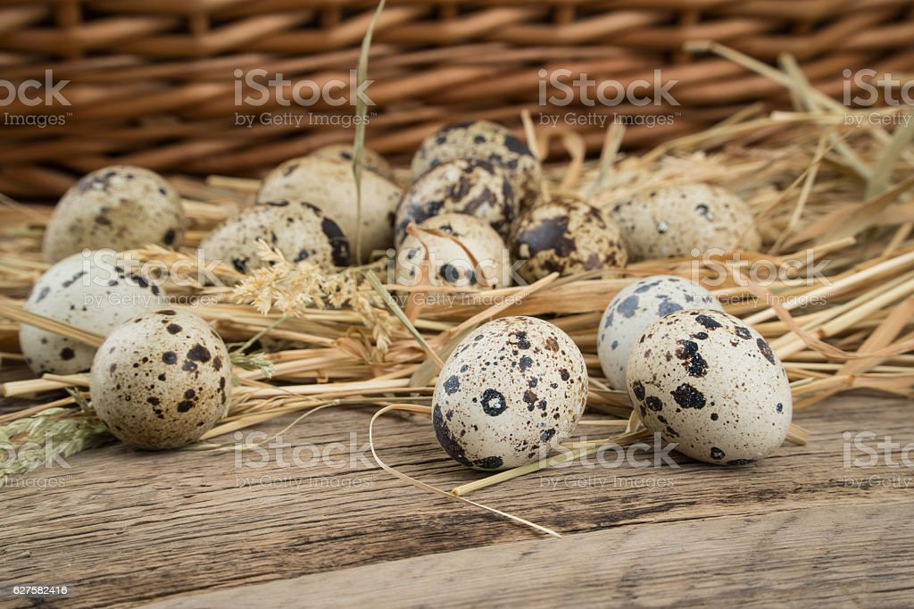 Quail eggs on old wooden table. stock photo