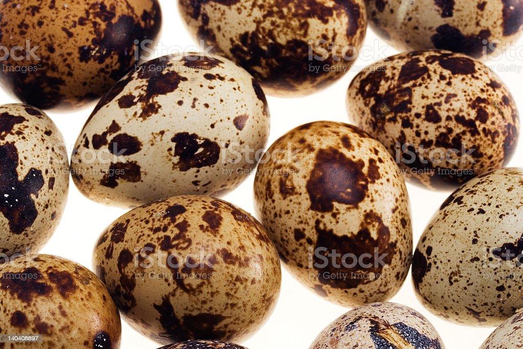 Quail's eggs royalty-free stock photo