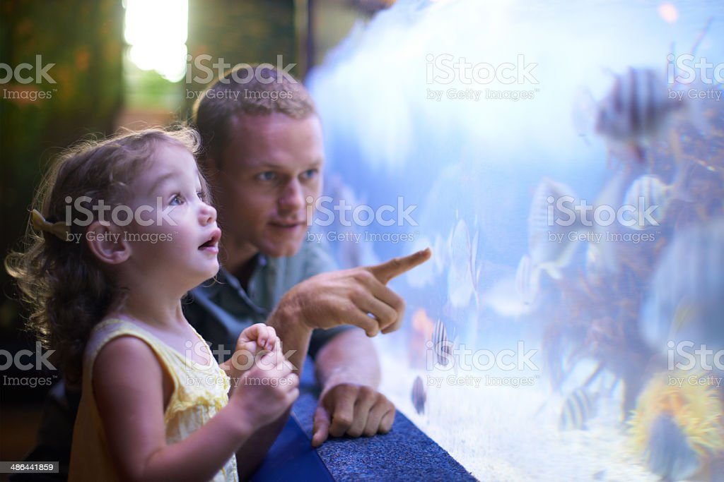 Quality time with her father and the fish stock photo