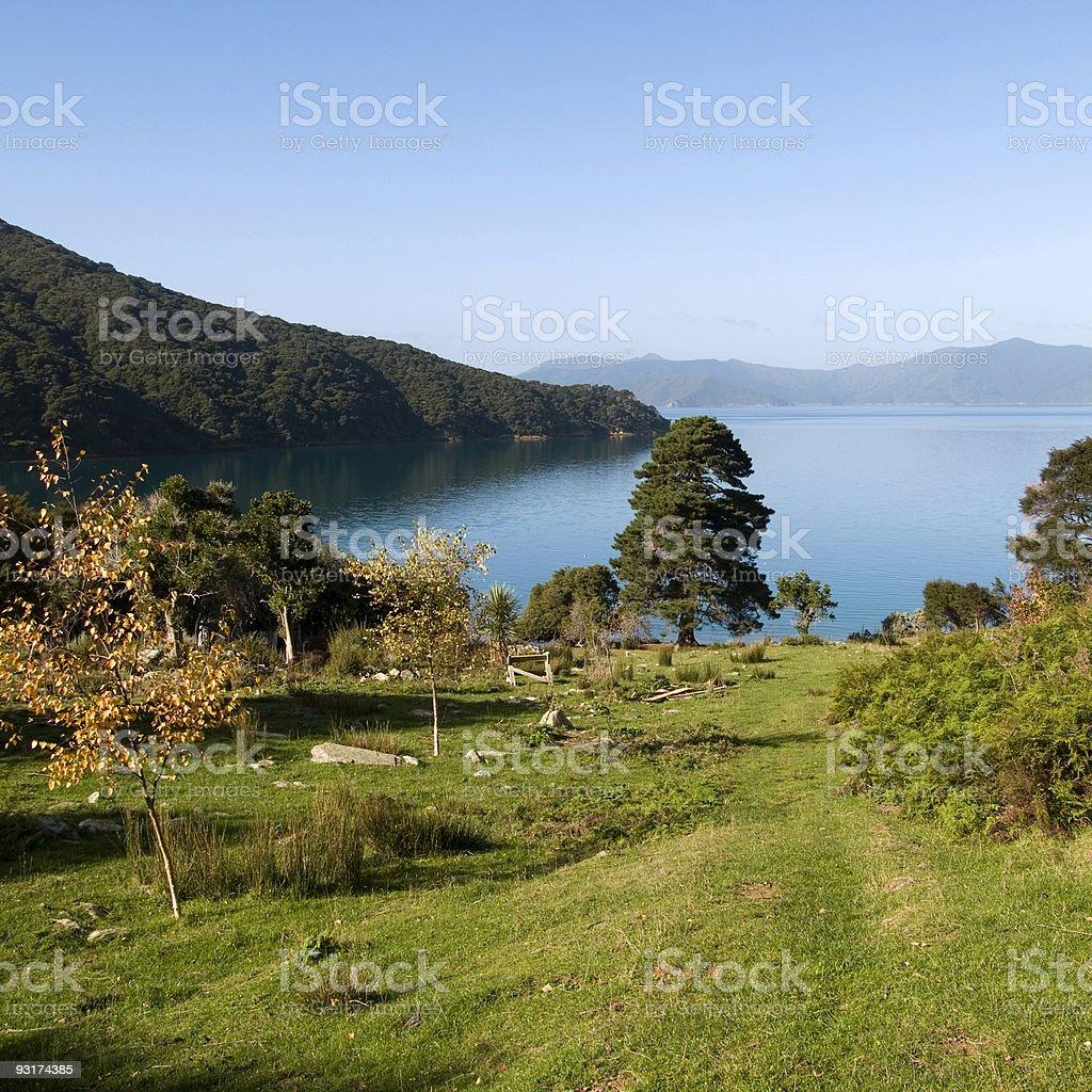 Queen Charlotte Sound, New Zealand stock photo