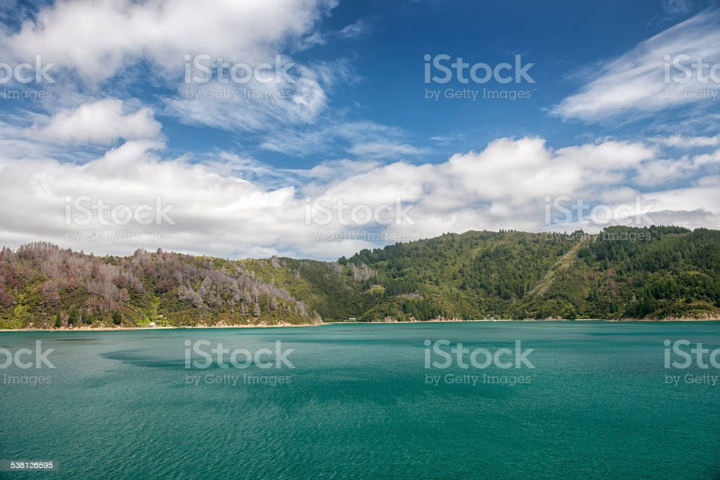 Queen Charlotte Sound, Picton, New Zealand stock photo