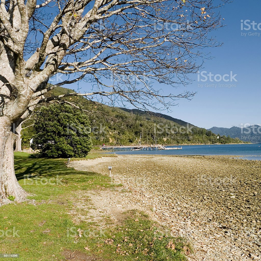 Queen Charlotte Track, New Zealand stock photo