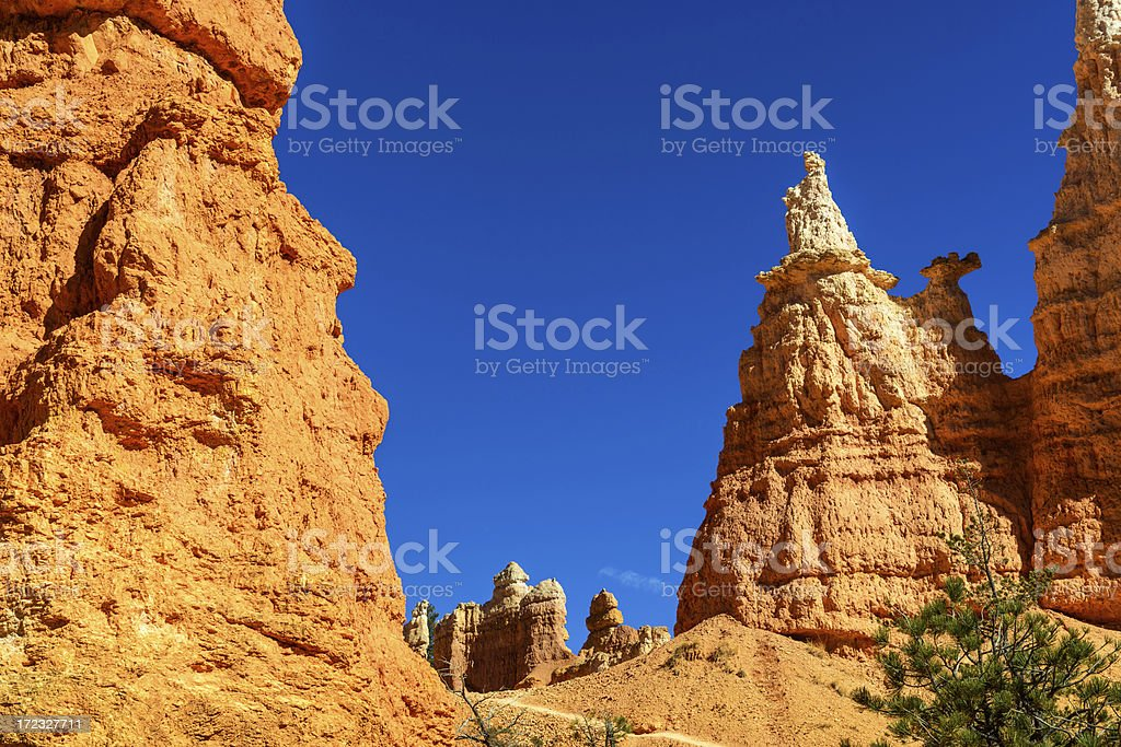 Queen Victoria Hoodoo in Bryce Canyon, Utah royalty-free stock photo