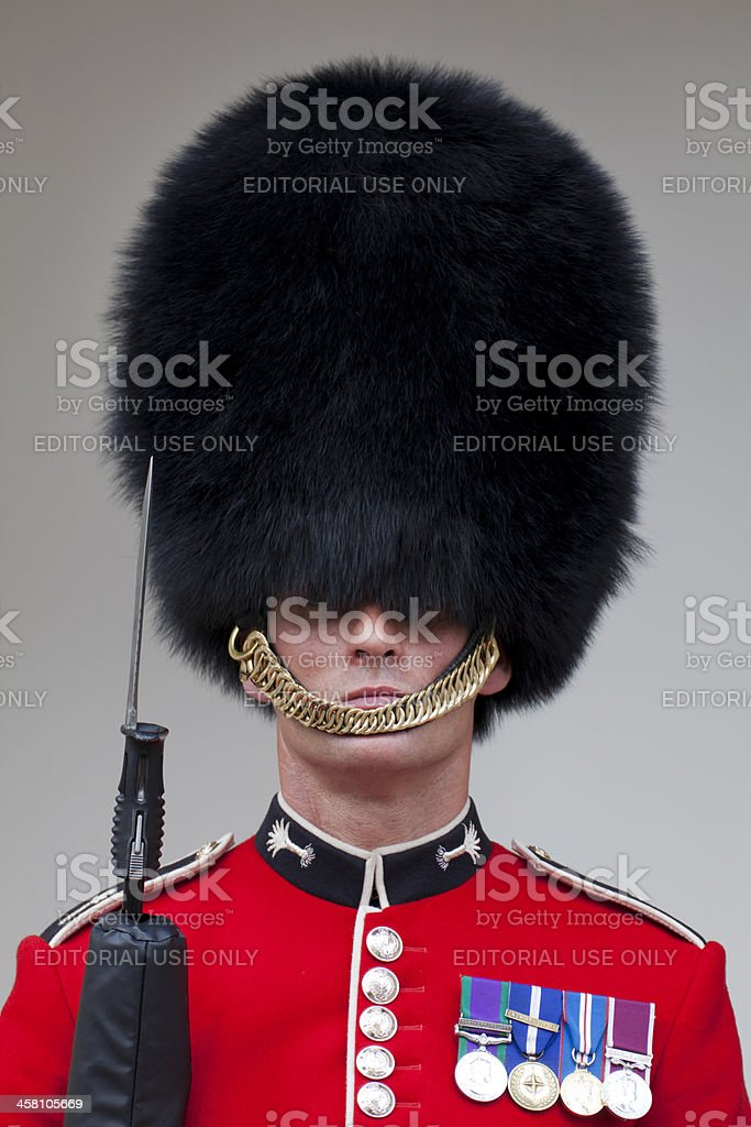 Queen's Guard royalty-free stock photo