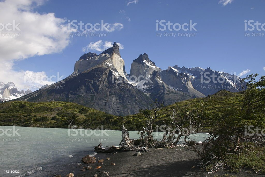Quernos del Paine royalty-free stock photo