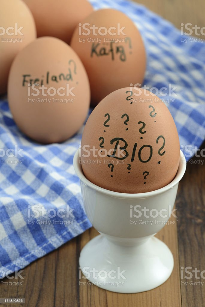 question mark for biological eggs from livestock production stock photo