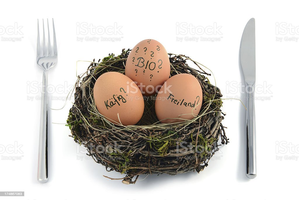 question mark for how biological the eggs are stock photo