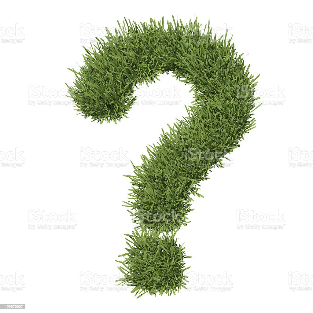 Question mark made of grass stock photo