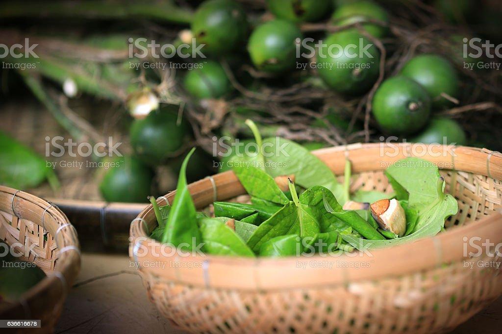 Quid of betel and areca-nut stock photo