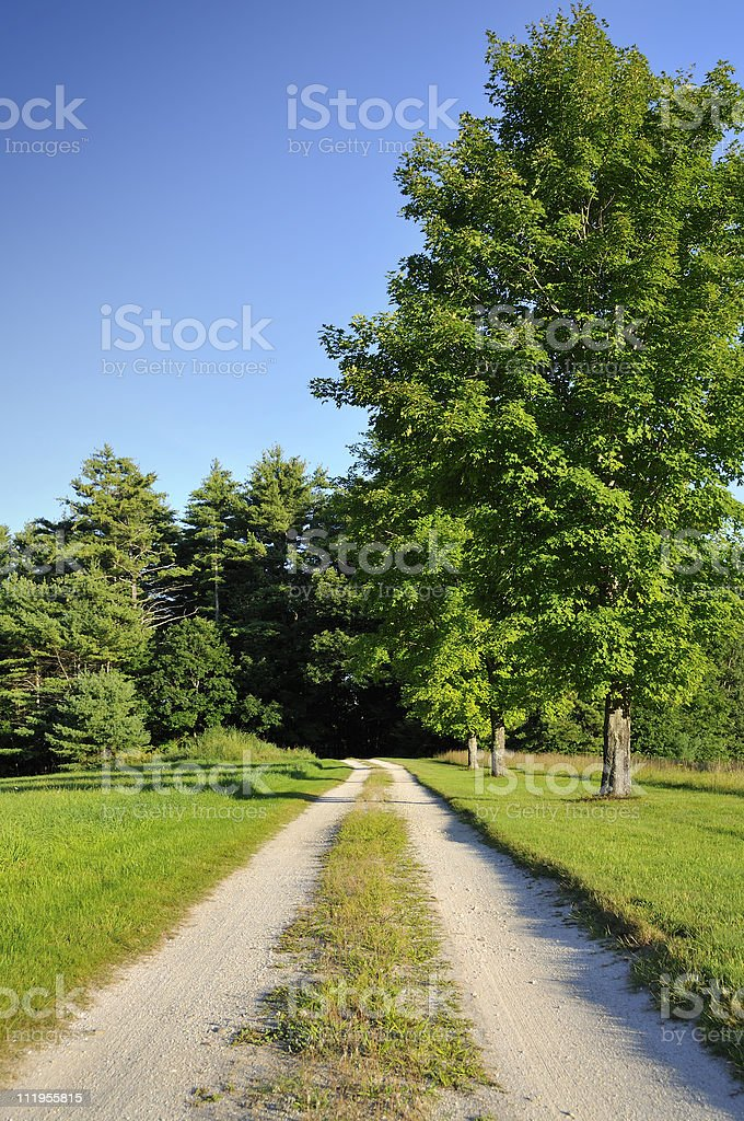 Quiet Country Lane royalty-free stock photo