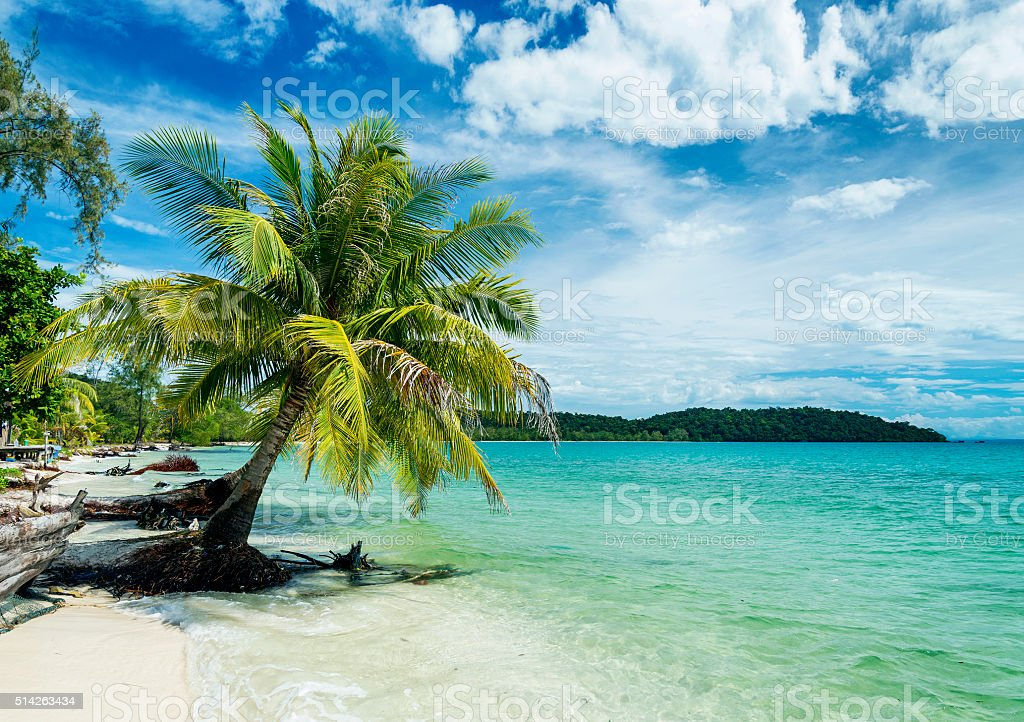quiet empty paradise beach in koh rong near sihanoukville cambodia stock photo