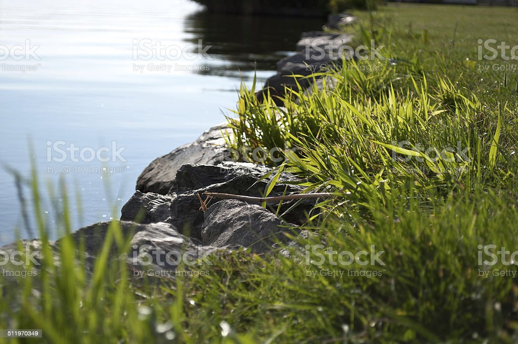 quiet lakeside with green grass stock photo