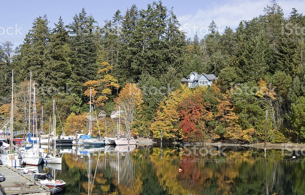 Quiet marina on Saltspring Island in full fall colors stock photo