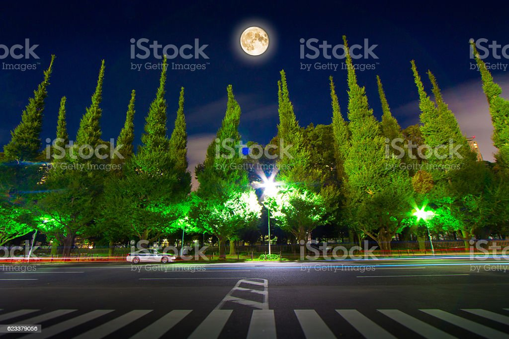 quiet night where super moon shines stock photo