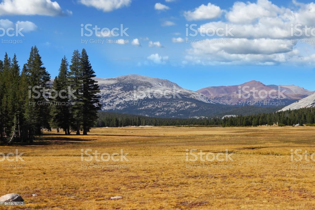 A quiet part of Yosemite Park stock photo