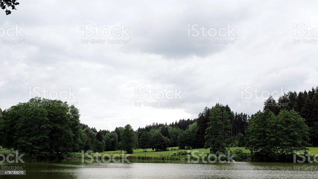 Quiet pond stock photo