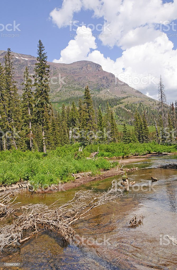Quiet stream in the mountains royalty-free stock photo
