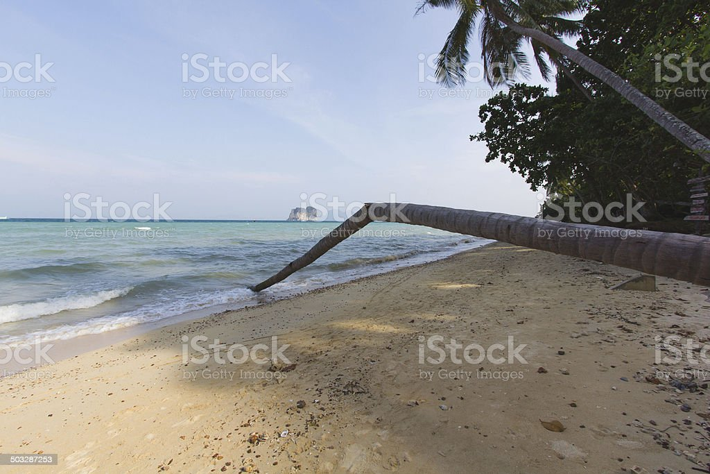 Quiet Time on a Quiet Island royalty-free stock photo