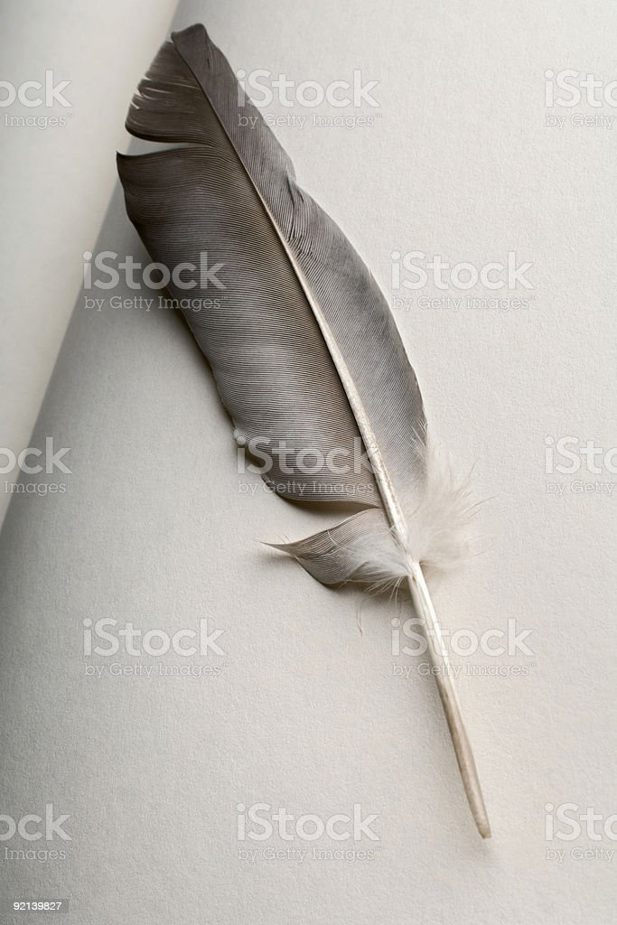 quill royalty-free stock photo