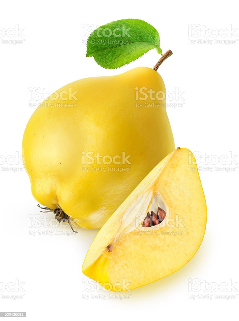 Quince fruit isolated on white with clipping path stock photo