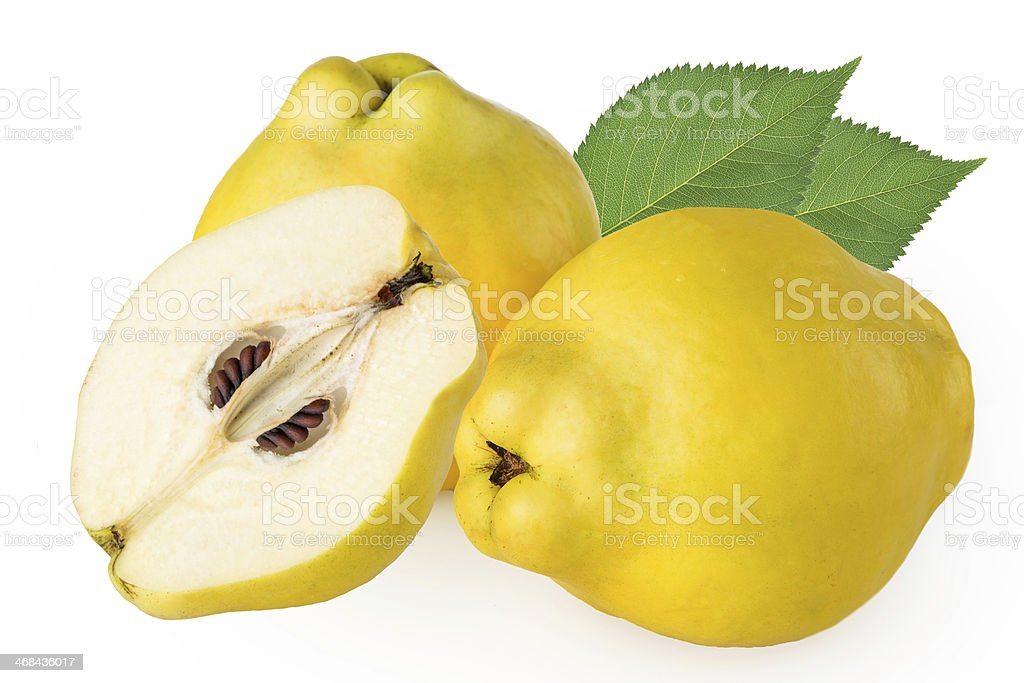 quince on a white background stock photo