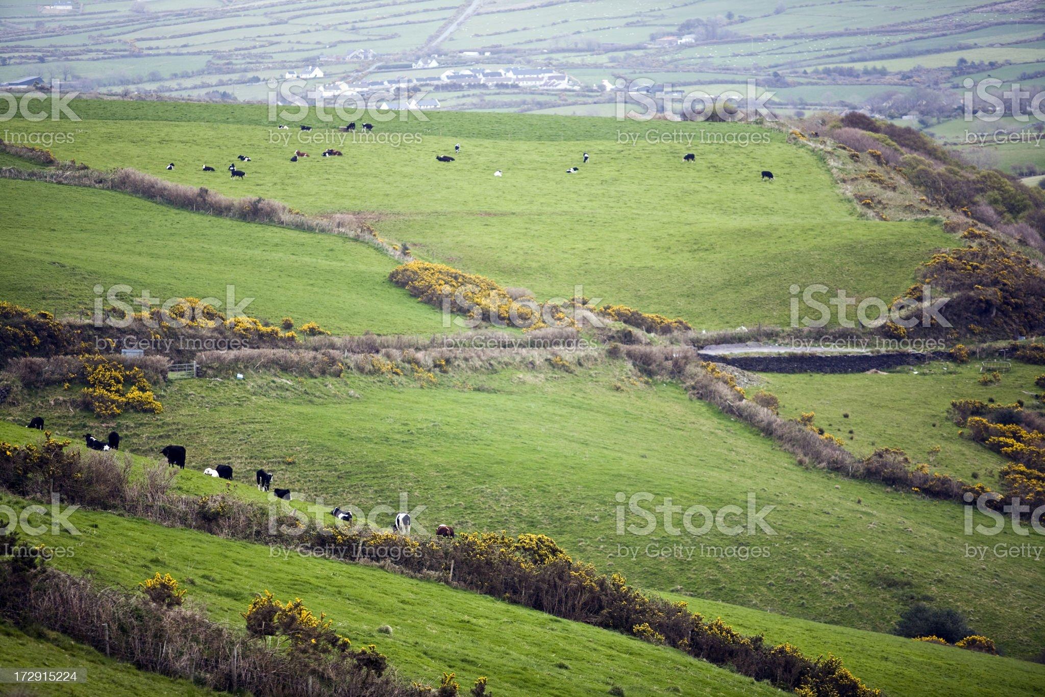 Quintessential Ireland royalty-free stock photo