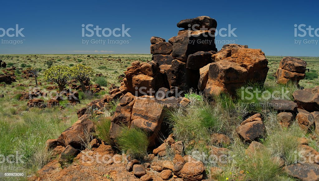 Quiver tree and giants sports ground near Keetmanshoop, Namibia stock photo