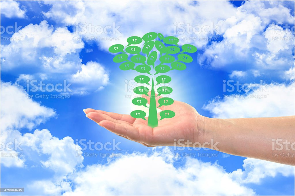 Quote tree in Woman hand sign on blue sky background stock photo