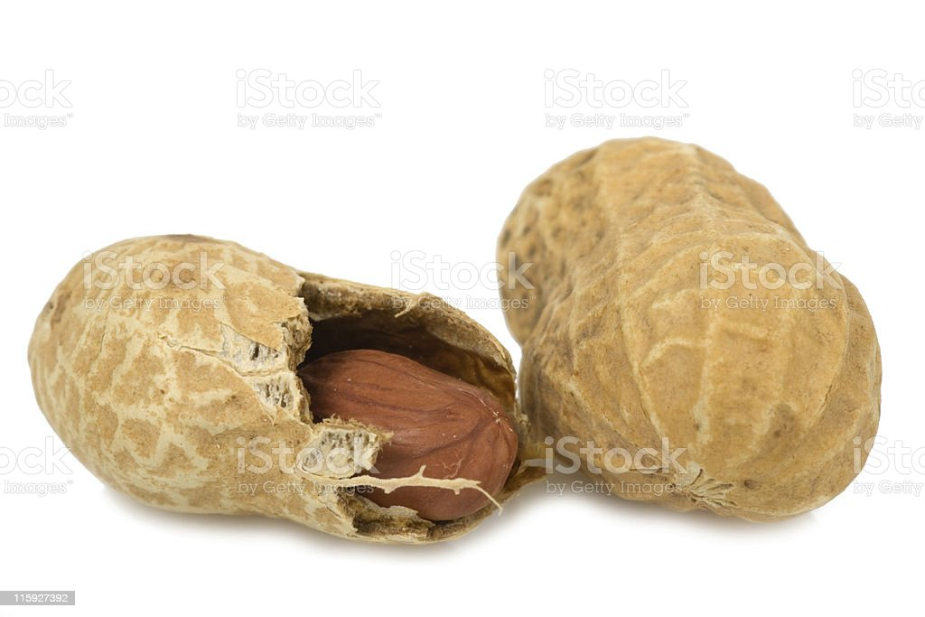 """groundnut"" royalty-free stock photo"