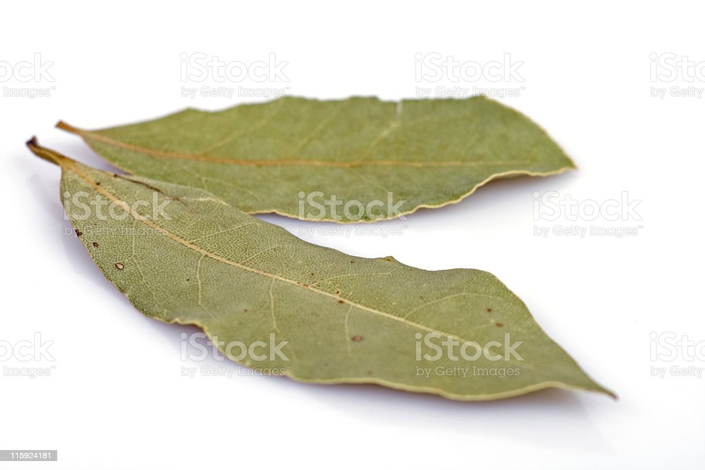 """Laurus nobilis"" or bay leaves royalty-free stock photo"