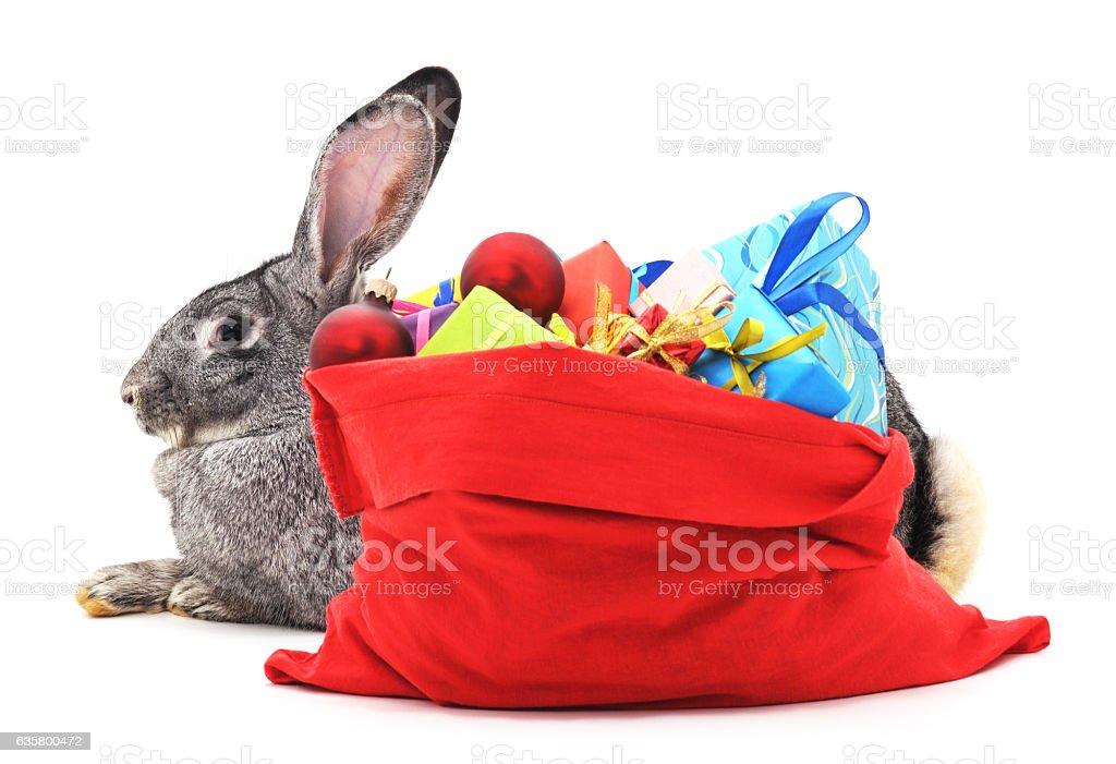 Rabbit and Christmas bag with gifts. stock photo