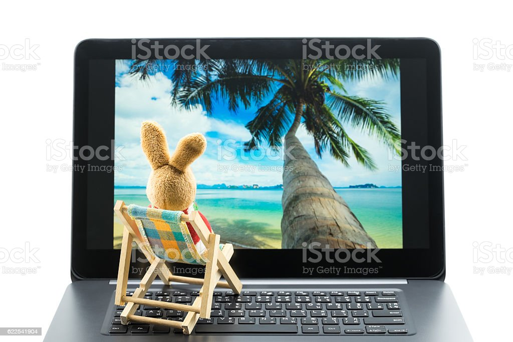 Rabbit doll on beach chair looking at photo on laptop. stock photo