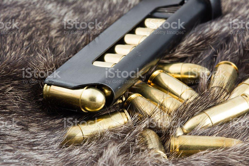 Rabbit Fur and Ammo stock photo