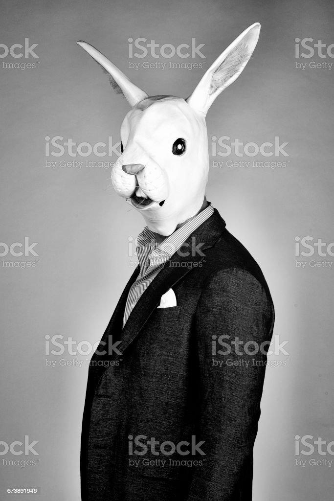 Rabbit man stock photo