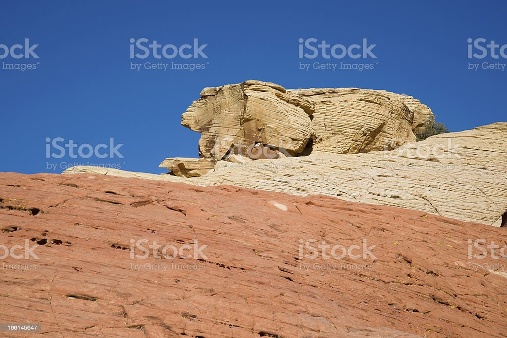 Rabbit Shaped Rock royalty-free stock photo