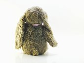 rabbit toy on rustic background space for text vintage filters
