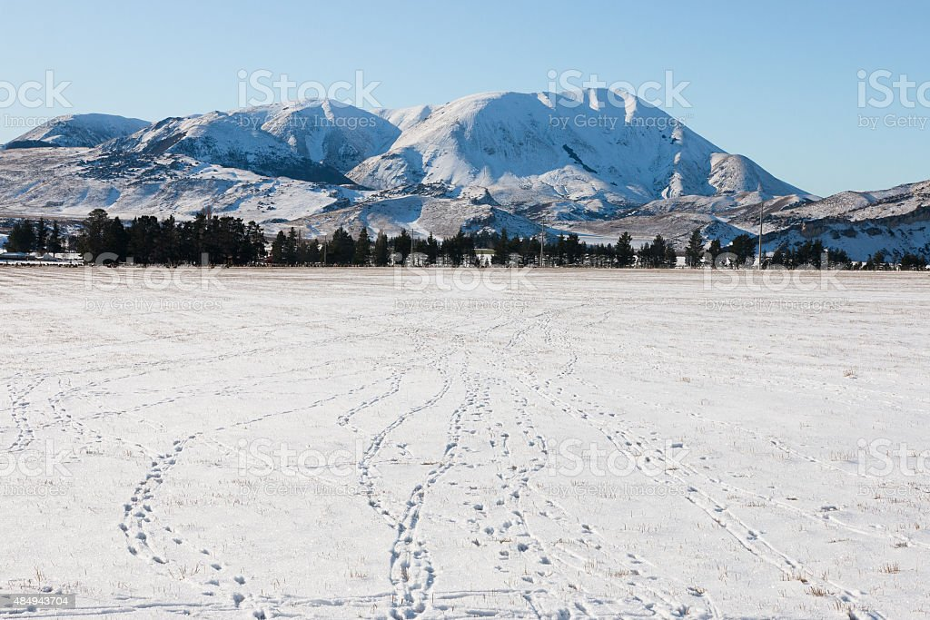 Rabbit traces on snow, Canterbury, New Zealand stock photo