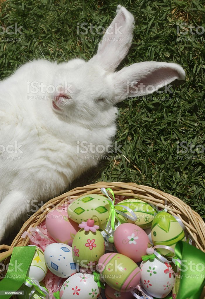 Rabbit with eggs royalty-free stock photo