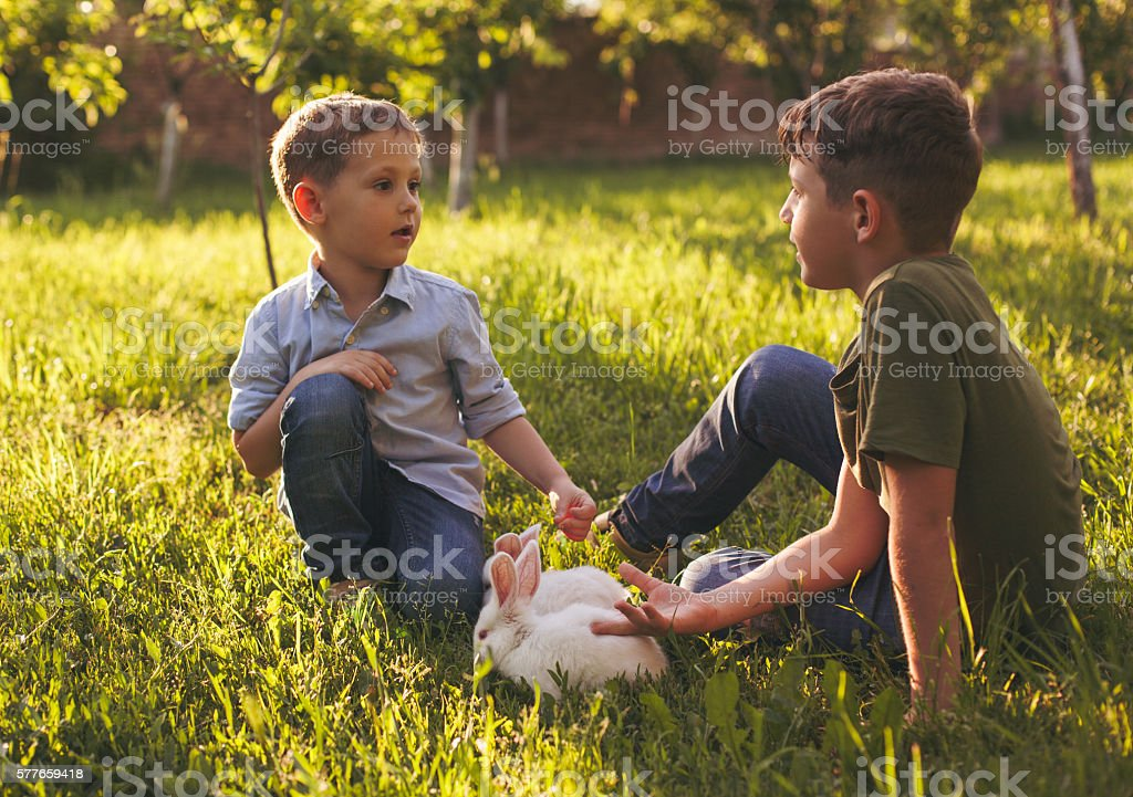 Rabbits and cute boys stock photo