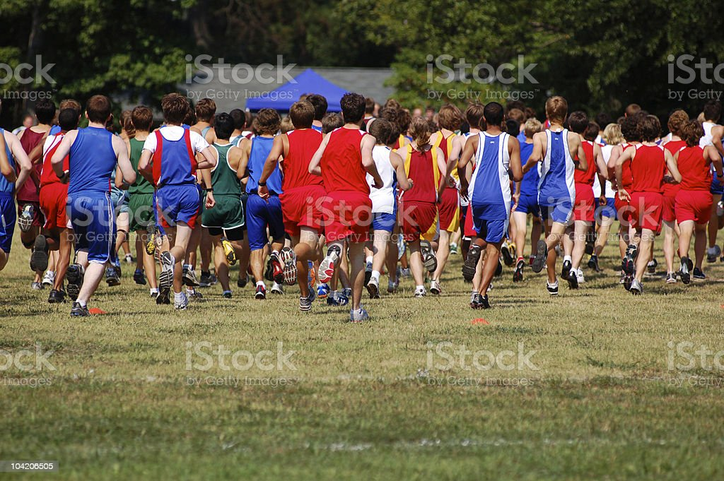 Race for the gold royalty-free stock photo