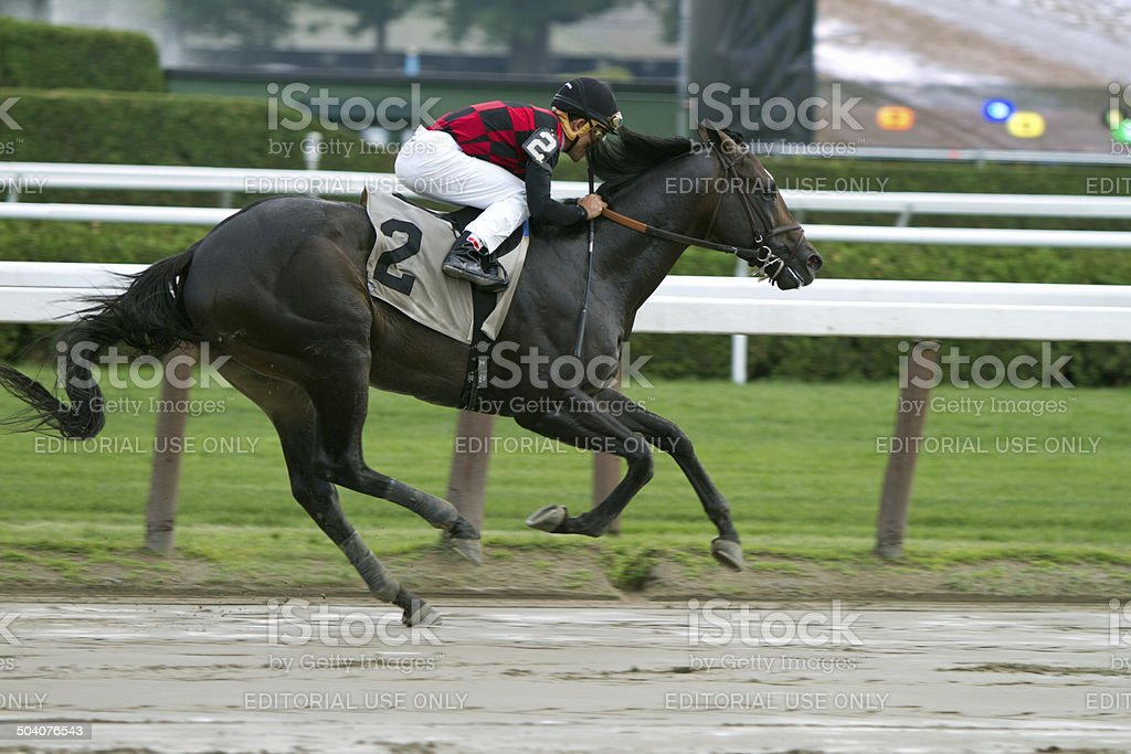 Race horse in full stride with jockey stock photo